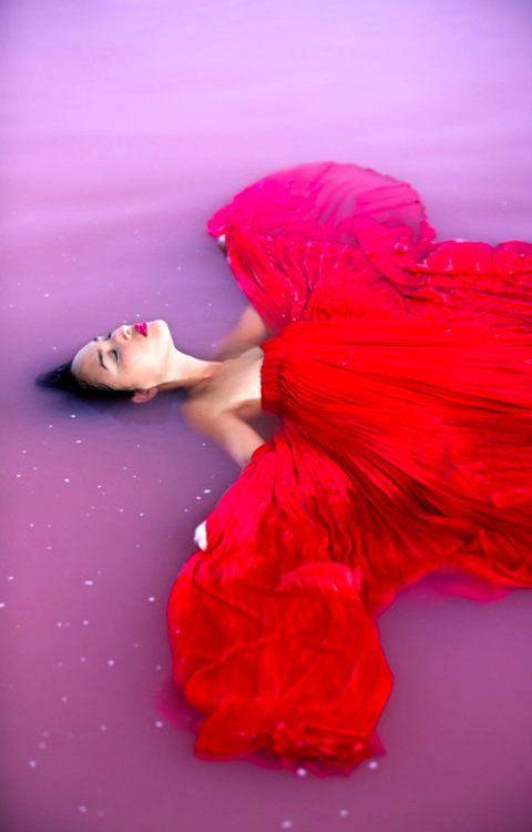 Rosella | Gary Pepper Girl
