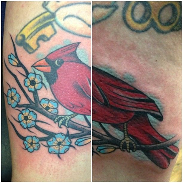 Red Cardinal Tattoo by Josh Adams @Absolute Ink