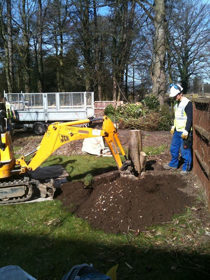 Removal of the hawthorn tree stump - the tree was blocking the views and making the north facing garden even darker www.ebgardendesign.co.uk