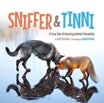 """This true story about an unlikely friendship between a fox and a hound will warm the hearts of children and parents alike. Illustrated with stunning photos, """" Sniffer & Tinni"""" follows the unusual but adorable pair, revealing how they met and how their strong bond evolved. Whether the two are wandering in the woods or playing with a ball, they re absolutely irresistible."""""""