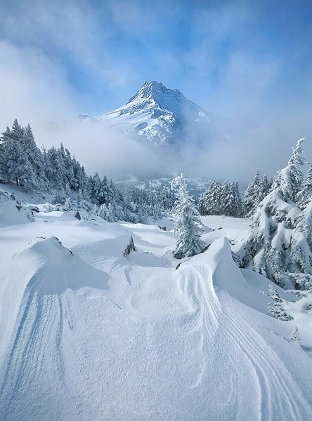 WINTER: I love the seasons and am lucky enough to live where we have four distinctive seasons