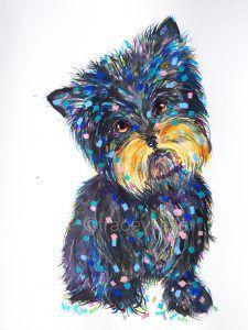 Yorkshire Pet Portrait Tracey Keller