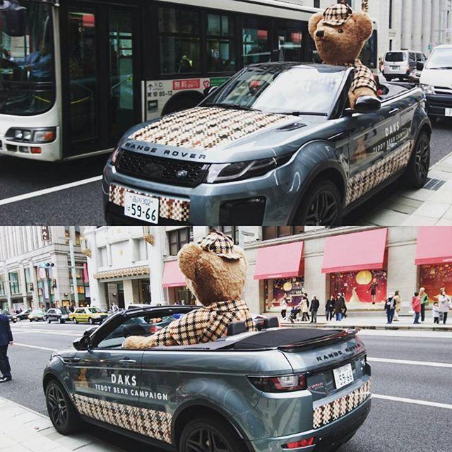 テディベア号発見#rangerover#teddybear#daks#daksテディベアフォトコンテスト