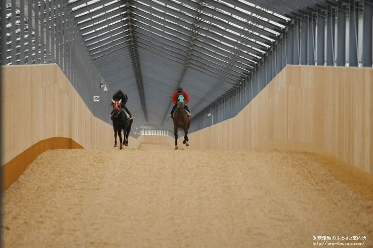Indoor half mile track.  So need one at the barn! Who needs to lunge when you've got an indoor track??!!