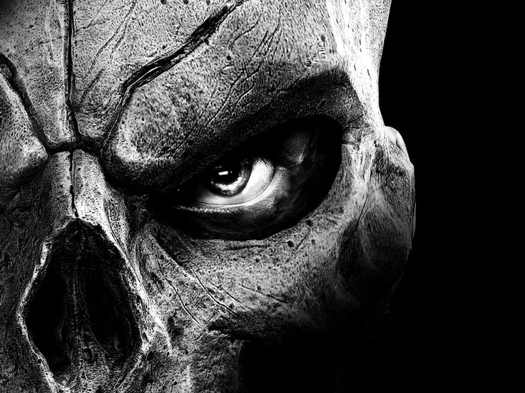 Skull Wallpapers High Quality Download Free Hd Wallpapers | Anime Radius
