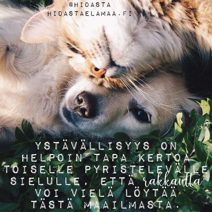 Ihanaa viikonloppua ja rakkautta kaikille ❤❤❤ #ystävällisyys #ihmisyys #yhteys #rakkaus