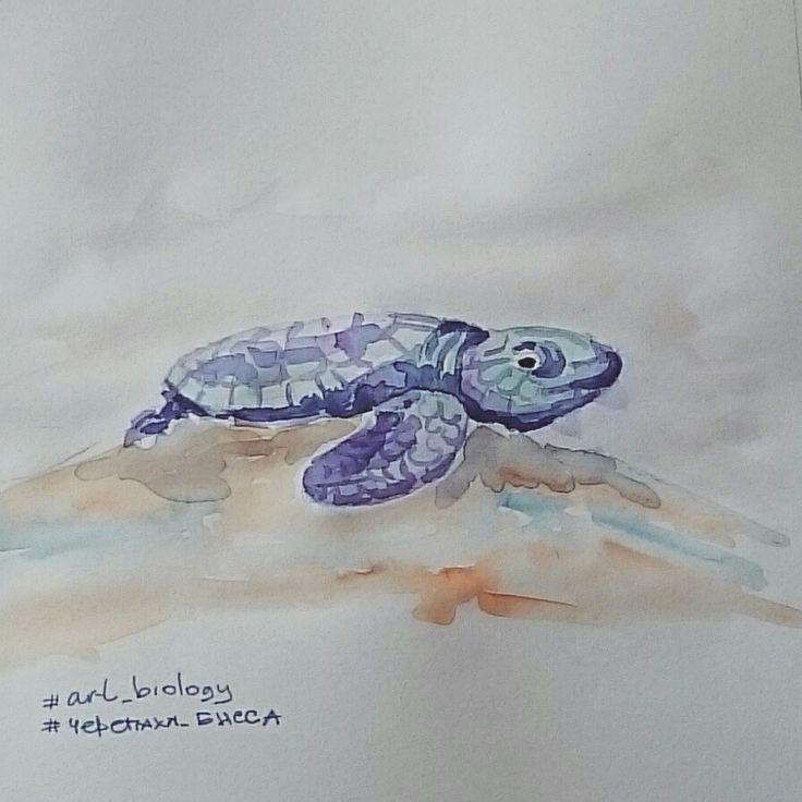 Черепаха бисса, art, illustration, grafics, design