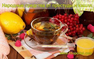 Лечение травами: Народные средства от простуды и кашля