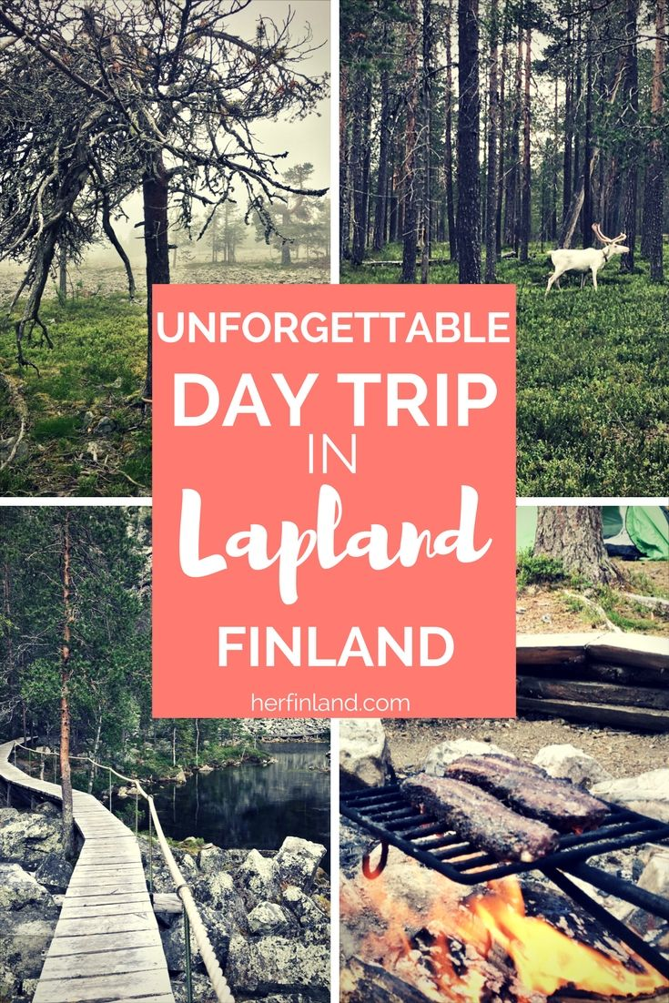 A walking day trip in Lapland is a must! This beautiful and easy route is just one of many starting from Pyhä Ski Resort, just 1,5 hours away from Rovaniemi.