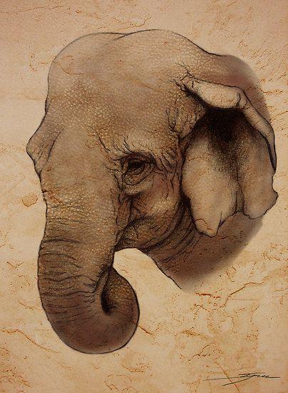 indian elephant - Ine Spee