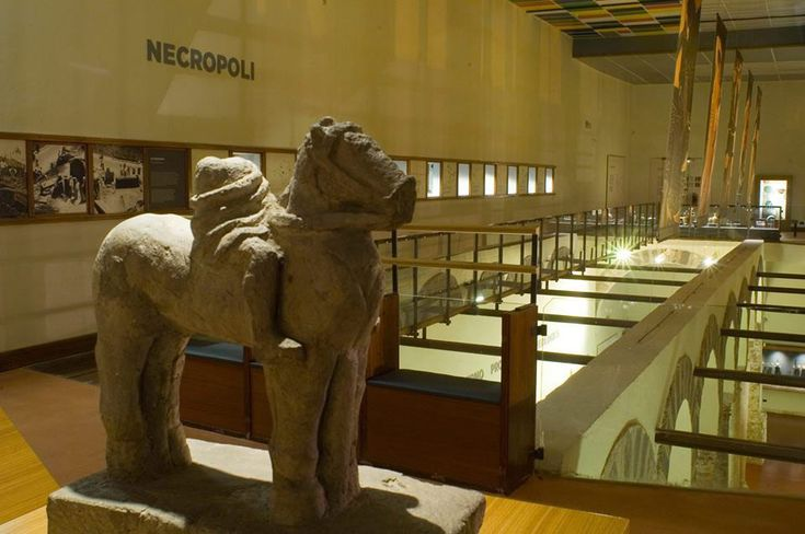 Museo Archeologico Provinciale. In a prominent position are the trappings of the princely tomb of #Roscigno