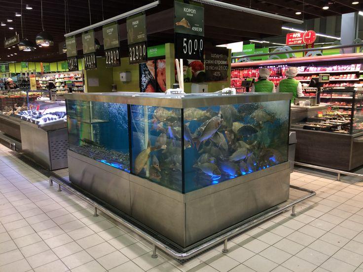 картинки аквариумного магазина как пермские