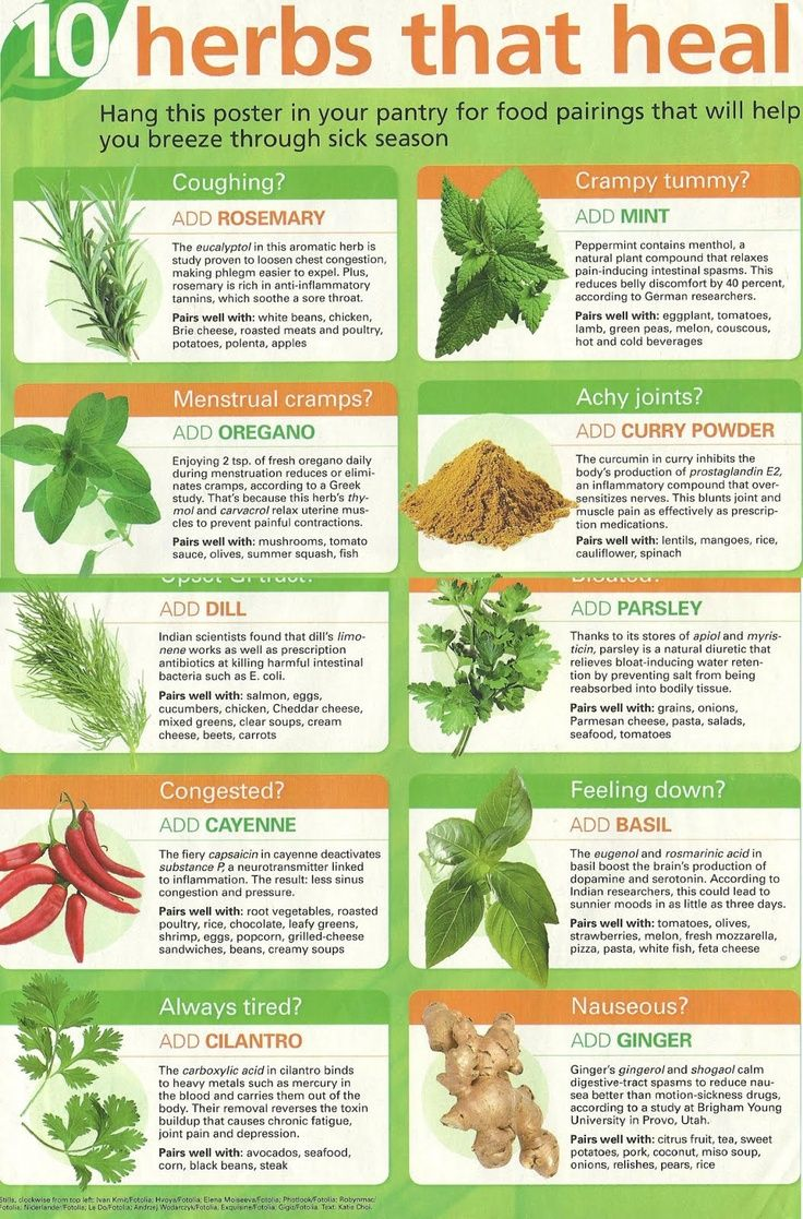 10 Herbs that heal: Rosemary, Mint, Oregano, Curry powder, Dill, Parsley, Cayenne, Basil, Cilantro, Ginger