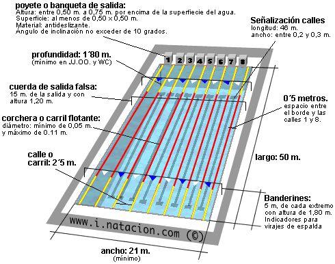 C mo es una piscina ol mpica piscinas pinterest for Piscina 25 metros