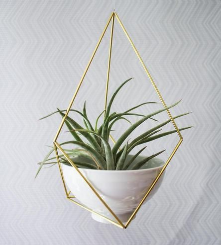Himmeli Succulent Planter by Handmade SamMade on Scoutmob Shoppe
