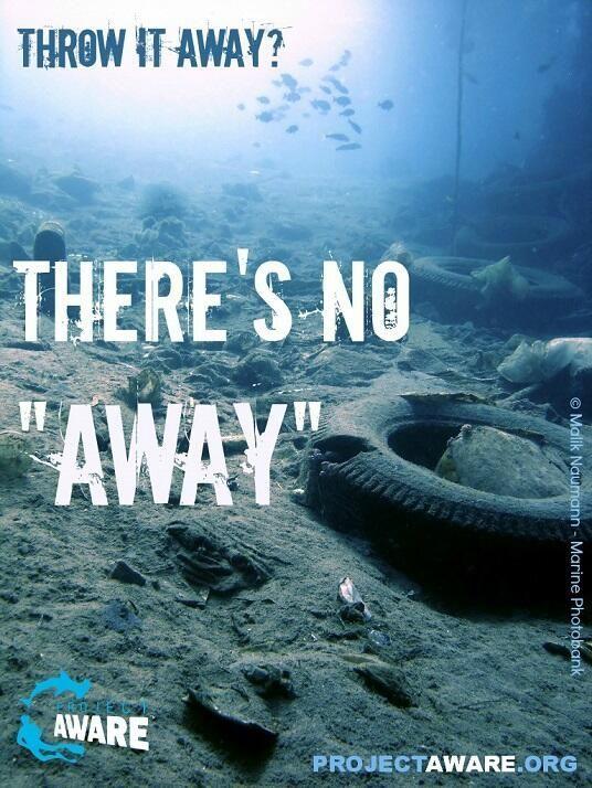 #DiveAgainstDebris today and support the movement for a trash free ocean - Photo Malik Naumann - Marine Photobank