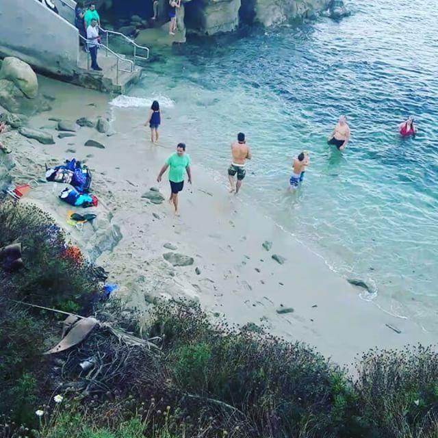 . . . . . #blogger #sandiego #california #lajolla #sealion #beach #sunshine #beachbound #beachlife #instagood #instadaily #instagram #picoftheday #beautiful #life #instagood #followforfollow #instago #like4follow #weekend #happiness #likeforlike #lajollalocals #sandiegoconnection #sdlocals - posted by Viviana Ozuna  https://www.instagram.com/vivianaozuna. See more post on La Jolla at http://LaJollaLocals.com
