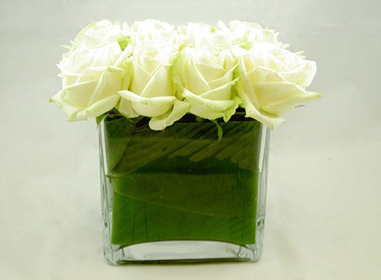 A Hedged Arrangement Of White Avalanche Roses In A Contemporary Square Glass Vase Internally