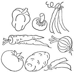 25 best images about groenten en fruit on