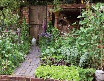 673 Best Beautiful Vegetable Gardens Images On Pinterest | Veggie Gardens,  Gardening And Edible Garden