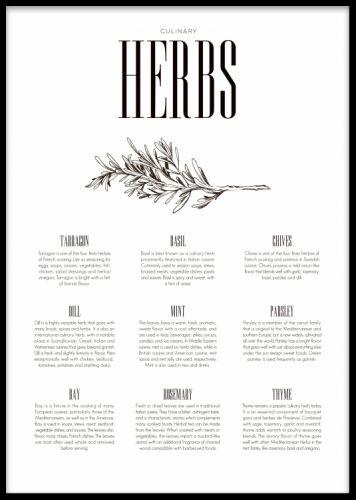 Herbs Type poster. Köksposter med örter. Fin och tredig poster till köket med print på örter. Se även vår Herbs poster med illustrationer, fint att matcha tillsammans. Inred köket med ett tavelkollage med våra köksposters och prints. Printet är svartvitt med text om örter som basilika, mynta och timjan.