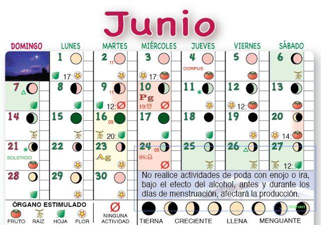Fases lunares Calendario Agricola Lunar