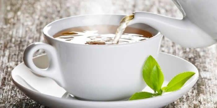 CHÁ FOLHA AMORA - Saiba tudo sobre o chá da folha de amora e seus benefícios na menopausa, queda de cabelo, rejuvenescimento, longevidade entre outros
