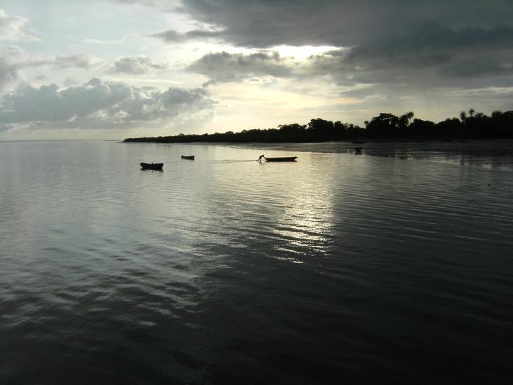 Moll d'Albreda. Gàmbia.