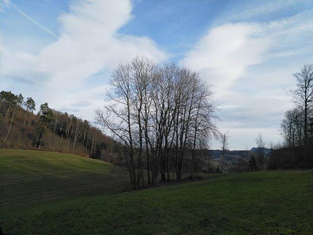 #Naturmomente #Schwarzbubenland #Solothurn #Nunningen #Schweiz  #photooftheday #magicplaces #kraftorte #switzerland #switzerlandpictures #magicswitzerland  #nature #naturelovers #green #forest #fall #autumn #sky #mountains  #clouds #cloudporn #cloudstagram #instaclouds #cloudysky