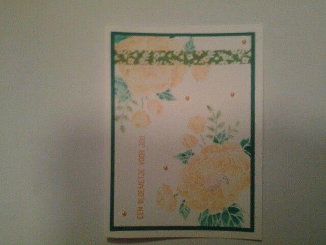 Een verjaardagskaart ingekleurd met de waterpen