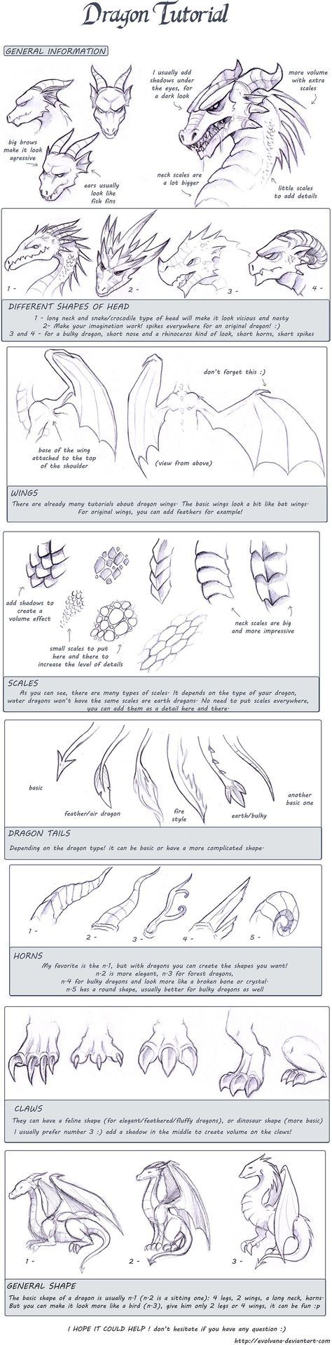 Dragon tutorial by Evolvana.deviantart.com on @deviantART