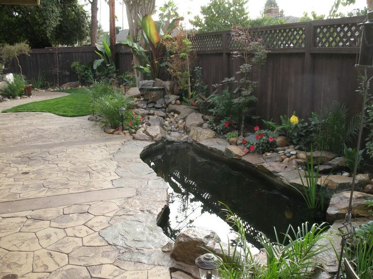 Side yard koi pond with creek style waterfall and edged in for Concrete garden pond