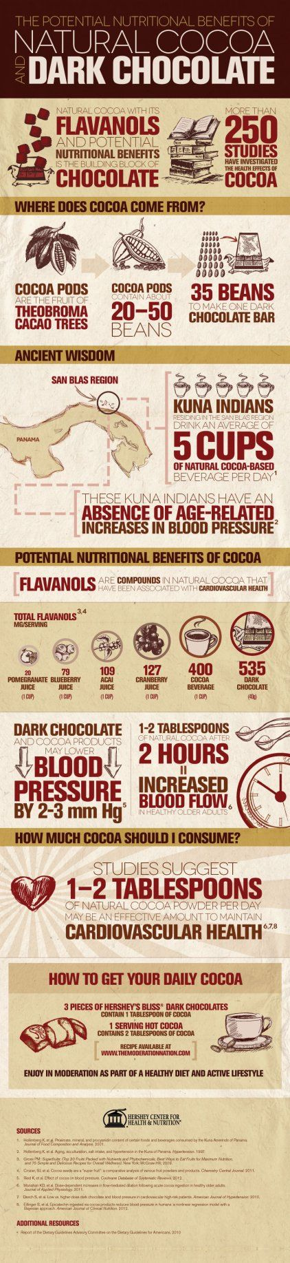 Natural Cocoa and Dark Chocolate Infographic