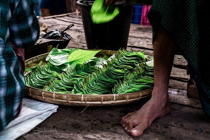 Betel Leaves - Betel leaves in wicker basket for sale, Nyaung U market, Bagan, Burma/Myanmar, Asia.  © Marja Schwartz www.marjaschwartz.com
