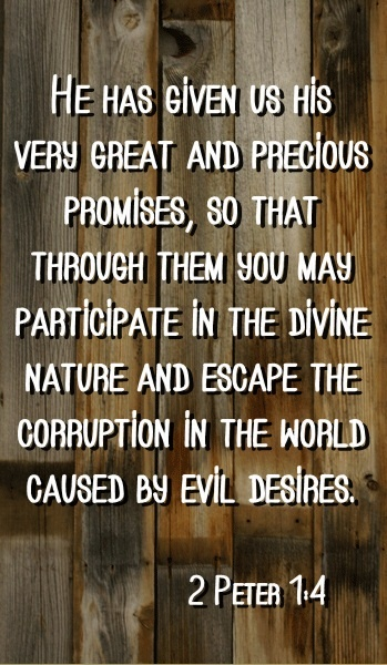 #Scripture    2 Peter 1:4: He has given us his very great and precious promises, so that through them you may participate in the divine nature and escape the corruption in the world caused by evil desires.