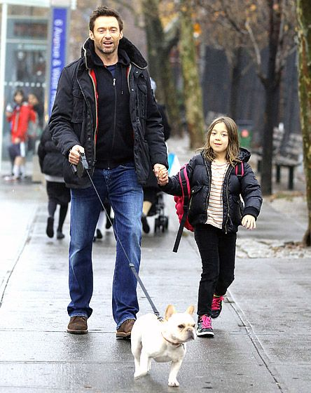 Hugh Jackman has a French bulldog? I now like him even more!!!