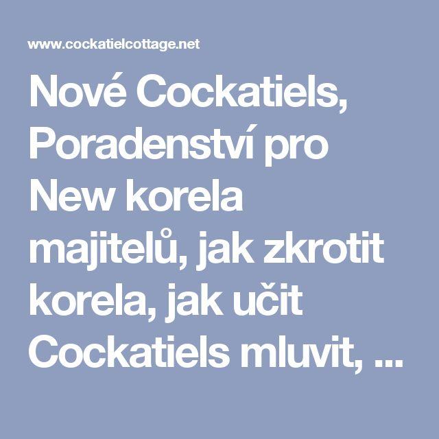 """Nové Cockatiels, Poradenství pro New korela majitelů, jak zkrotit korela, jak učit Cockatiels mluvit, jak učit o korela zpívat zkrocení korely, výcvik korely, co dělat, když o jednotném Bird Stanoví vejce, Ověření pravosti v případě, že vejce je oplodněno, proč Čokoláda je toxický pro korely a papoušky.  <Meta name = """"keywords"""" content = """"Cockatiels, nové ptáci, Symptomy ilness, známky nemoci, obecné informace, generál péče pro nové ptáků, základní péče, New korely..."""