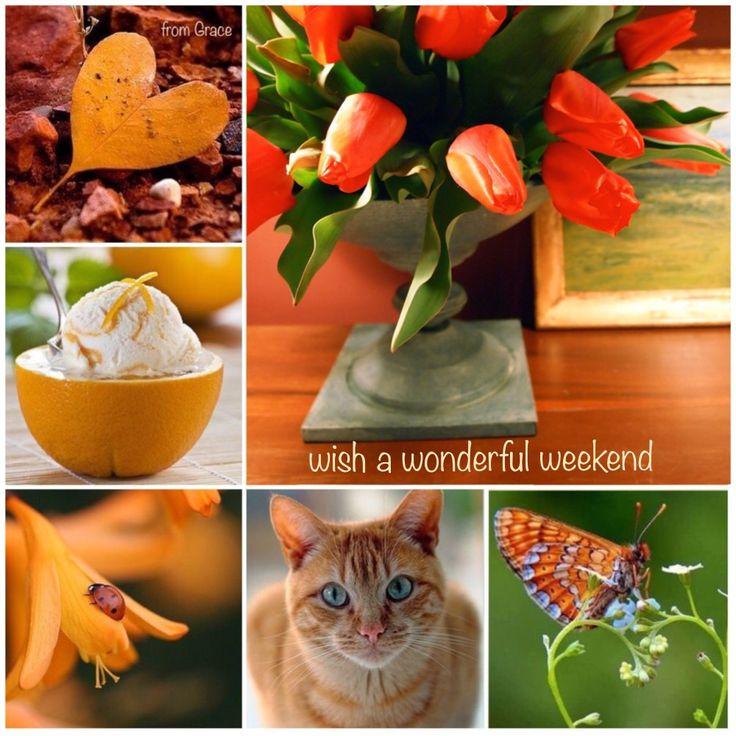 Wonderful weekend ✨