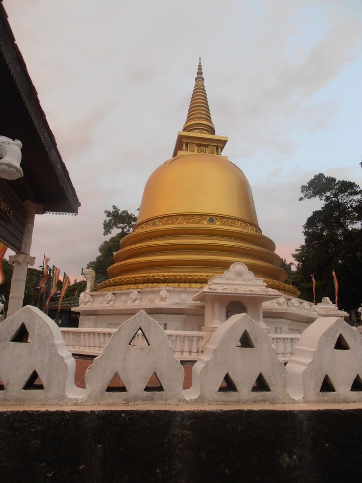 My travel - Gold temple