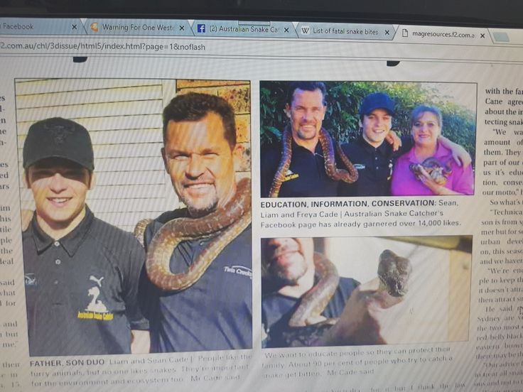 Australian Snake Catchers .... Its a family thing