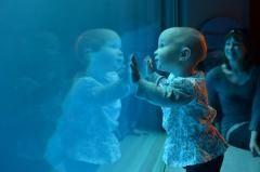 """""""수족관에서 찍은 내 딸 사진"""" http://i.wik.im/112244"""