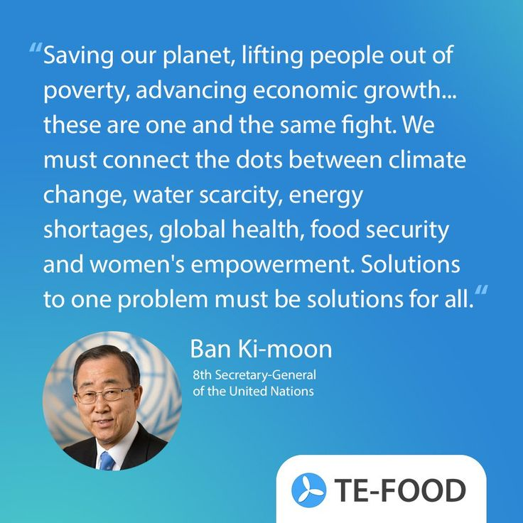 Ban Ki-moon quote saving our planet