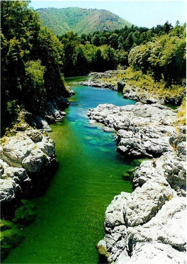 Pelorus bridge, Marlborough, NZ. Passed by here many times, plan on camping here in the near future :)
