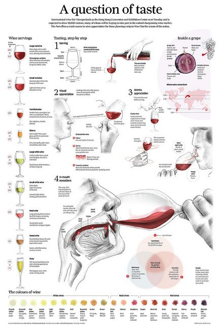 Beautiful visualization of Wine Basics- how you taste, the variation of colors, easy guide for appropriate wine glasses, and even a map of where wine is grown!  A question of taste by Adolfo Arranz, via Flickr