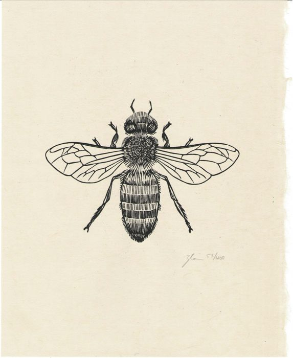 Honey Bee Woodcut Prints By Graham Blair