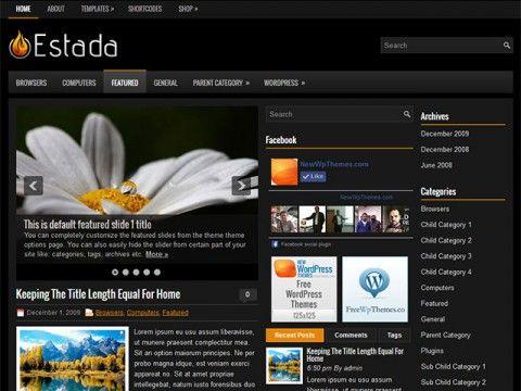 Estada WordPress theme