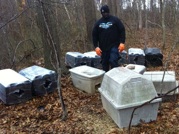 A Guardian puts some outdoor boxes on Long Island, hoping to provide shelter for some