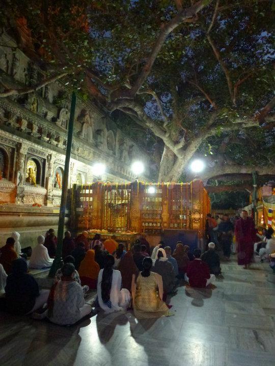 Asia - India - Bodh Gaya from Bodhgaya, India | 2014 Trip Around The World | Off Exploring