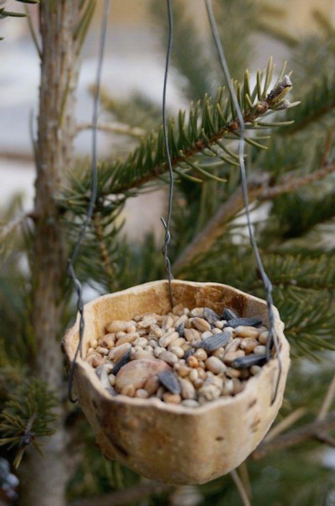 поделки из тыквы-птица-фидер