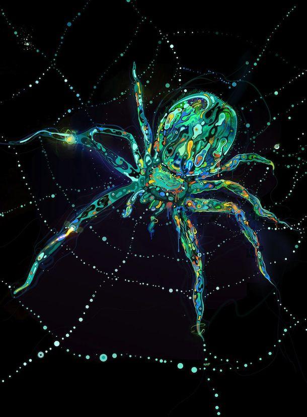 spider: Things Spider, Illustration, Saltyshadow, Hate Spiders, Badass Spiders, Shadows